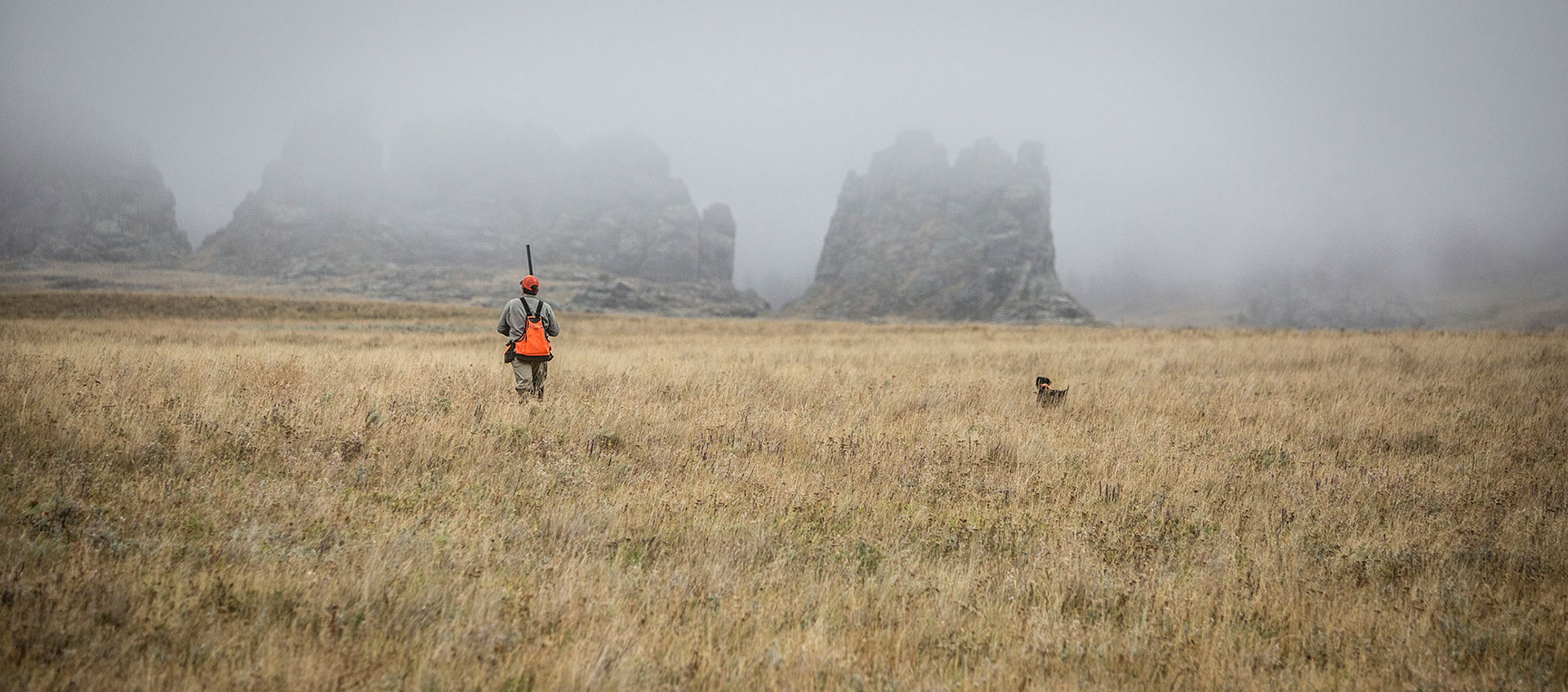 Upland Bird Hunting Outfitter & Guide in Montana